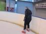 2014 - Patinaje sobre hielo